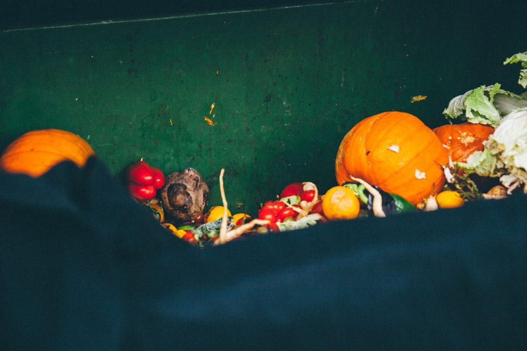 potravinovy odpad