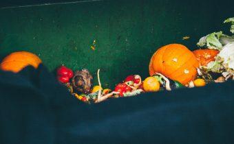 Čo ste o potravinovom odpade pravdepodobne nevedeli