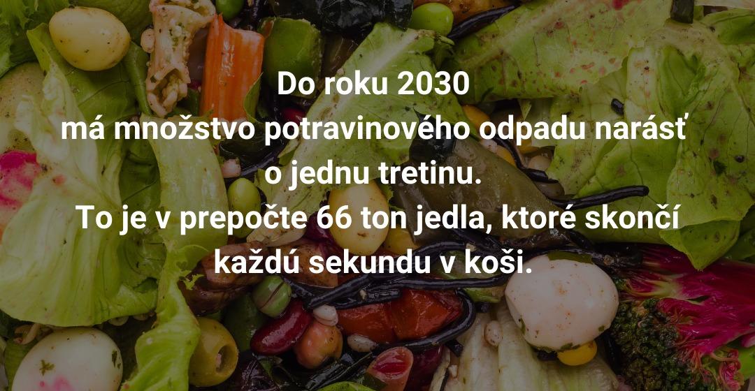 free food - proti plytvaniu potravinami